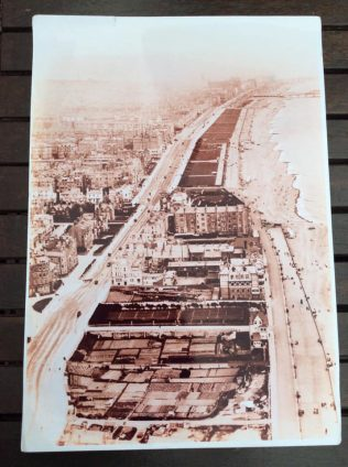 allotments on the beach at Brighton and Hove