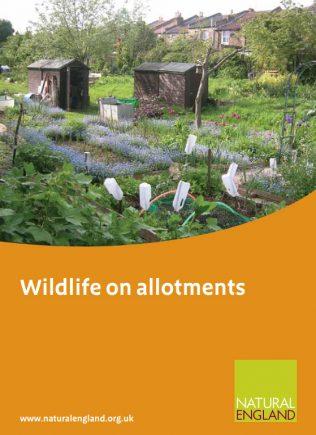 Wildlife on Allotments