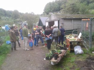 Veg and Plant swap