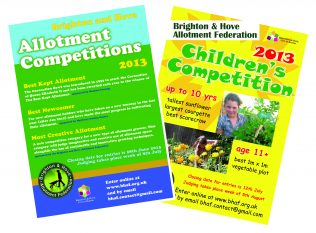 Allotment Competitions 2013