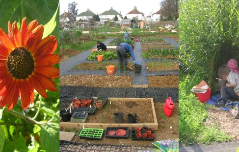 Brighton and Hove Organic Group