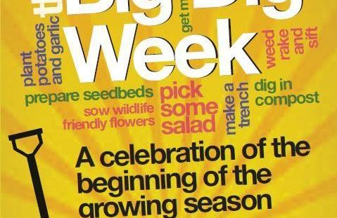 Still time to take part in Big Dig Week!