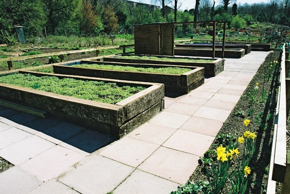 Coldean raised beds for gardeners with disabilities