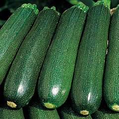 What to do with all those courgettes?