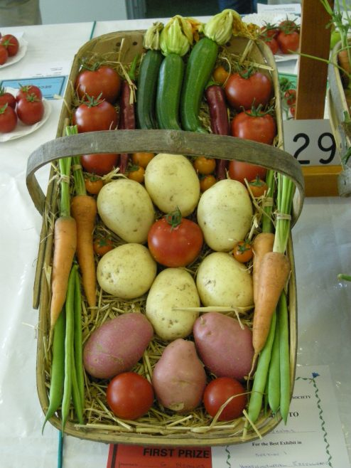 Mixed veg in Trug - winner | PHS member