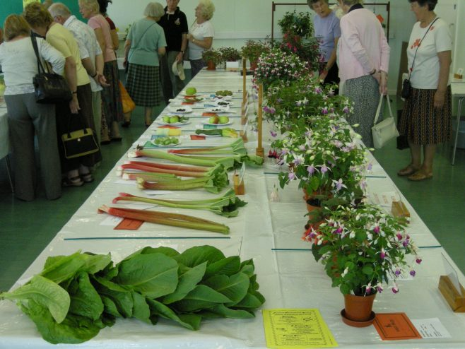 Vegetable and Fuschia entries | PHs member