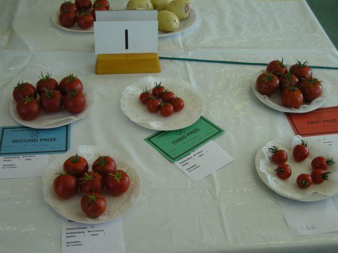 Tomato entries | PHS member