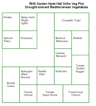 Water requirements for different plants