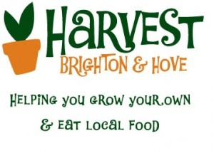Harvest Brighton Survey