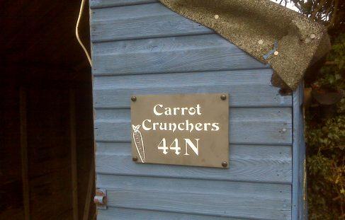 Carrot Crunchers