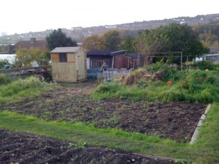 september 2010 - betti the shed