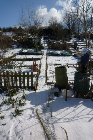 Snow takes its toll   Plot 148