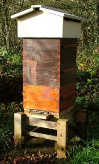 Modified Abbe Warre Hive