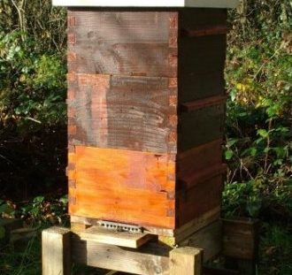Local Bee Groups and Societies